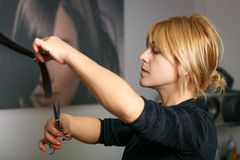 Professional hair stylist with scissors and comb working at customer`s hair. Royalty Free Stock Image