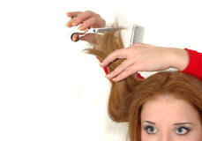 Professional hairdresser Royalty Free Stock Photo