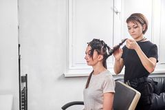 Professional hairdresser braiding clients hair. In the salon royalty free stock photos