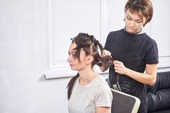 Professional hairdresser braiding clients hair. In the salon royalty free stock image