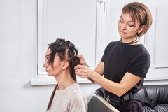 Professional hairdresser braiding clients hair. In the salon royalty free stock photography