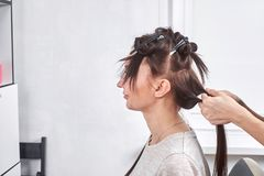 Professional hairdresser braiding clients hair. In the salon Stock Image