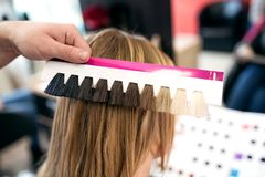 Professional hairdresser choose hair dye color at salon. Close up royalty free stock photo