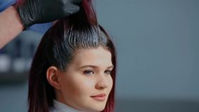 Professional hairdresser color hair girls. Close-up. stock video