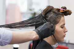 Professional hairdresser coloring hair Stock Photography