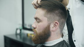 Professional hairdresser combing and cutting hair stock video footage