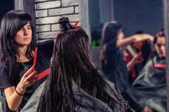 Professional hairdresser combing and cutting wet hair of young b. Runette women with a bun while she is sitting in armchair in beauty salon Stock Photos