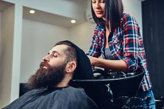 Handsome bearded man in the barbershop. Professional hairdresser wiping with a towel after washing head in a barbershop royalty free stock photography