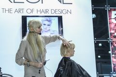 Professional hairdresser works Royalty Free Stock Image