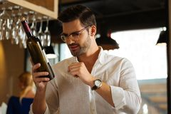 Professional handsome sommelier holding a bottle of wine. Special choice. Professional handsome sommelier holding a bottle of wine while wanting to recommend it royalty free stock images