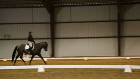 Professional horse riding competition video stock video footage