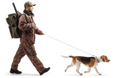 Professional hunter walking with a beagle dog royalty free stock photos