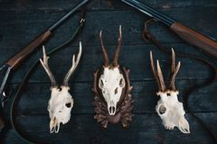 Professional hunters equipment for hunting. Rifle, knives, trophy sculps, ammunition, and others on a wooden black background. Tro stock image