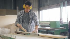 Professional joiner sawing wooden plank with circular saw working in wokshop. Alone standing near power instrument wearing safety glasses and headphones stock video