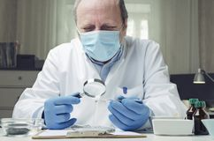Professional laboratory assistant testing and cheking seeds.Concept of laboratory researches for cheking quality of seeds royalty free stock image