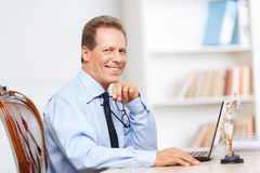 Professional lawyer working on computer Royalty Free Stock Images
