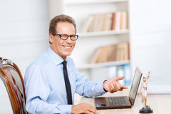 Professional lawyer working on computer Royalty Free Stock Photography