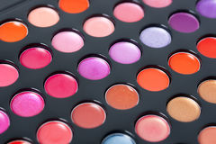 Professional lipstick palette Royalty Free Stock Image