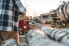 Professional lumberman worker using chainas on sawmill royalty free stock image