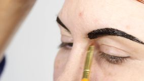 Professional make-up artist drawing eyebrows of beautiful client. Beauty and fashion concept.  stock video footage