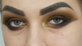 Professional make-up artist makes the makeup smoky eyes of brown shade of a beautiful model with green eyes close up stock footage