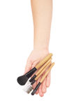Professional make-up brush cosmetic in female hand Stock Image