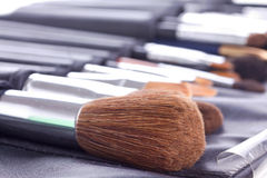 Professional make-up brushes Royalty Free Stock Photo