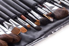 Professional make-up brushes in compact case Stock Image