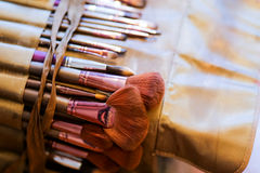 Professional make up brushes and cosmetic Stock Image