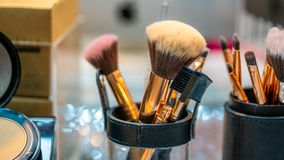 Professional Make Up Brushes Set royalty free stock photo