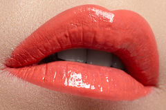 Professional make-up. Lipgloss. Lipstick Royalty Free Stock Images
