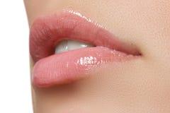 Professional make-up. Lipgloss. Lipstick Royalty Free Stock Photo