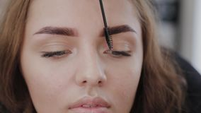 Professional makeup artist combing eyebrows with a special eyebrow brush of a beautiful girl. Woman client in beauty. Salon doing eyebrow makeup stock footage