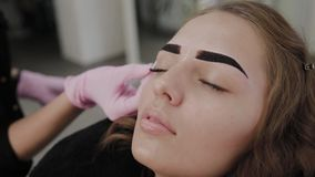 Professional makeup artist paints eyebrows to client with henna. Professional makeup artist paints eyebrows to client with henna stock video
