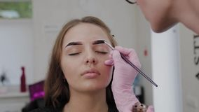 Professional makeup artist paints eyebrows to client with henna. Professional makeup artist paints eyebrows to client with henna stock footage