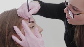 Professional makeup artist paints eyebrows to client with henna. Professional makeup artist paints eyebrows to client with henna stock video footage