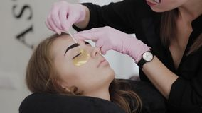 Professional makeup artist plucking eyebrows for client in beauty salon. Professional makeup artist plucking eyebrows for client in beauty salon stock video footage