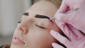 Professional makeup artist plucking eyebrows for client in beauty salon. Professional makeup artist plucking eyebrows for client in beauty salon stock video