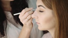 Professional makeup artist putting cosmetics. Focus on the model`s face. stock footage