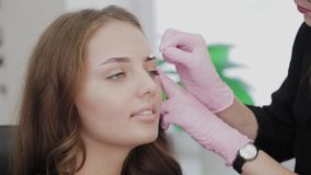 Professional makeup artist treats the eyebrows to the client with a cotton swab. Professional makeup artist treats the eyebrows to the client with a cotton swab stock video footage