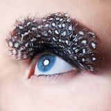 Professional Makeup. False Eyelashes Royalty Free Stock Photography