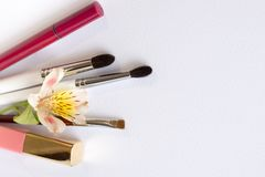 Professional makeup tools brushes, eye shadows, lipgloss, flowers flat lay composition copy space on white background.  stock photos