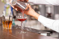 Professional male bartender is preparing drink in Royalty Free Stock Image