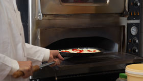 Professional male chef baking pizza Royalty Free Stock Image
