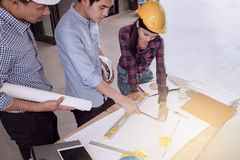 Professional male and female group of engineers working and disc Stock Image