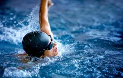 Professional male swimmer Royalty Free Stock Image