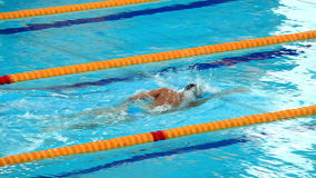 Professional male swimmer swimming in the pool stock video