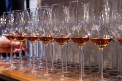 Professional man-cavist takes wine glass with cognac from wooden shelf in liquor store. Concept of degustation spirits: whiskey, royalty free stock photography