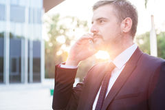 Professional manager during work Royalty Free Stock Images