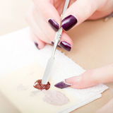 Professional manicure Royalty Free Stock Photography